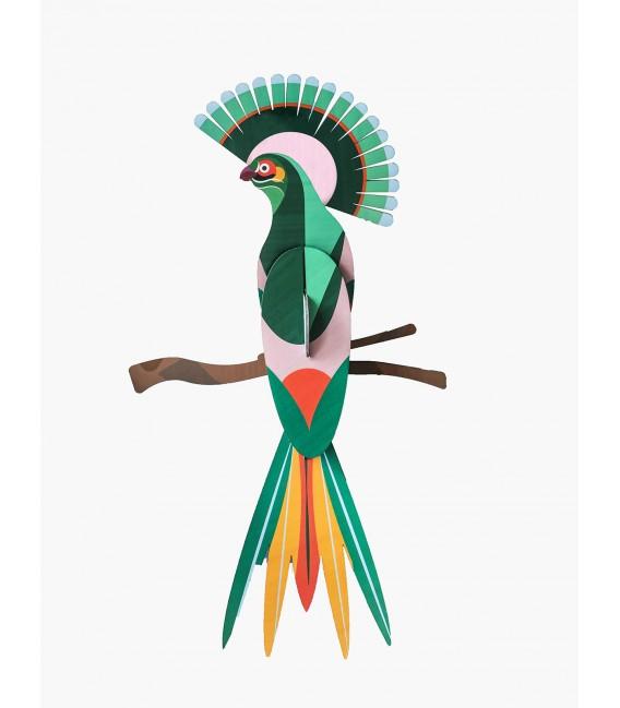 Paradise bird - Gili - Studio Roof